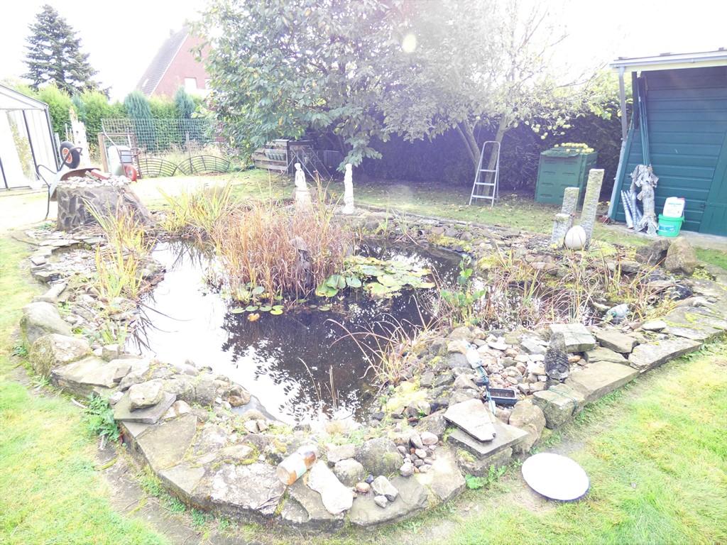 Teichanlage und verschiedene Obstbäume