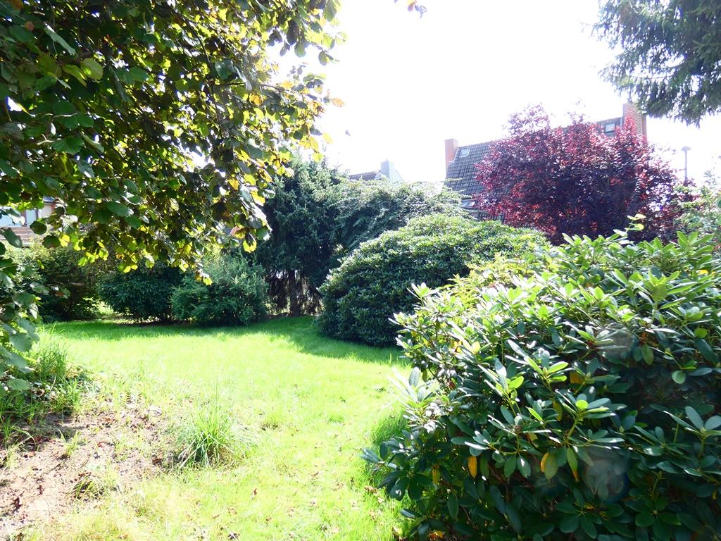 seitlicher Blick in den Garten